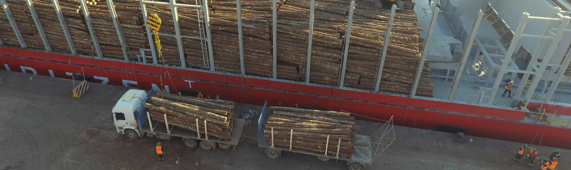 grúa cargando troncos