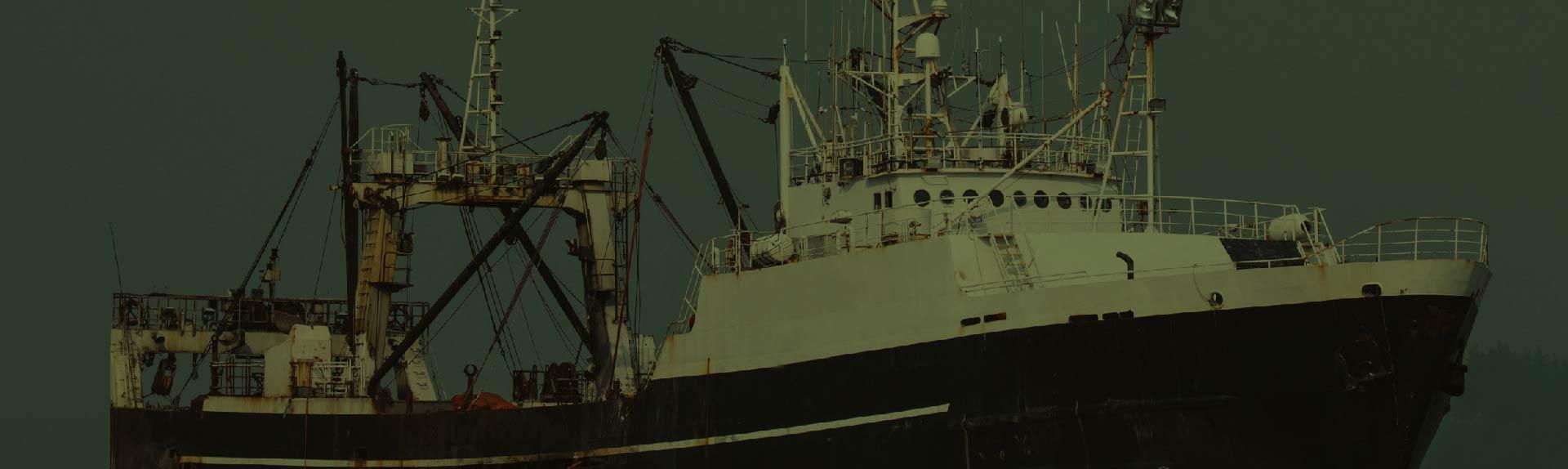 buque pesquero